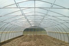 crop-tunnel-may-06-023
