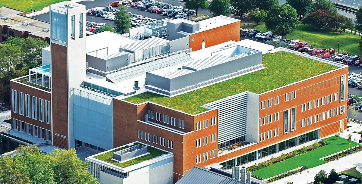 Green Roof Outfitters - Commercial Supplier of Amenity Deck