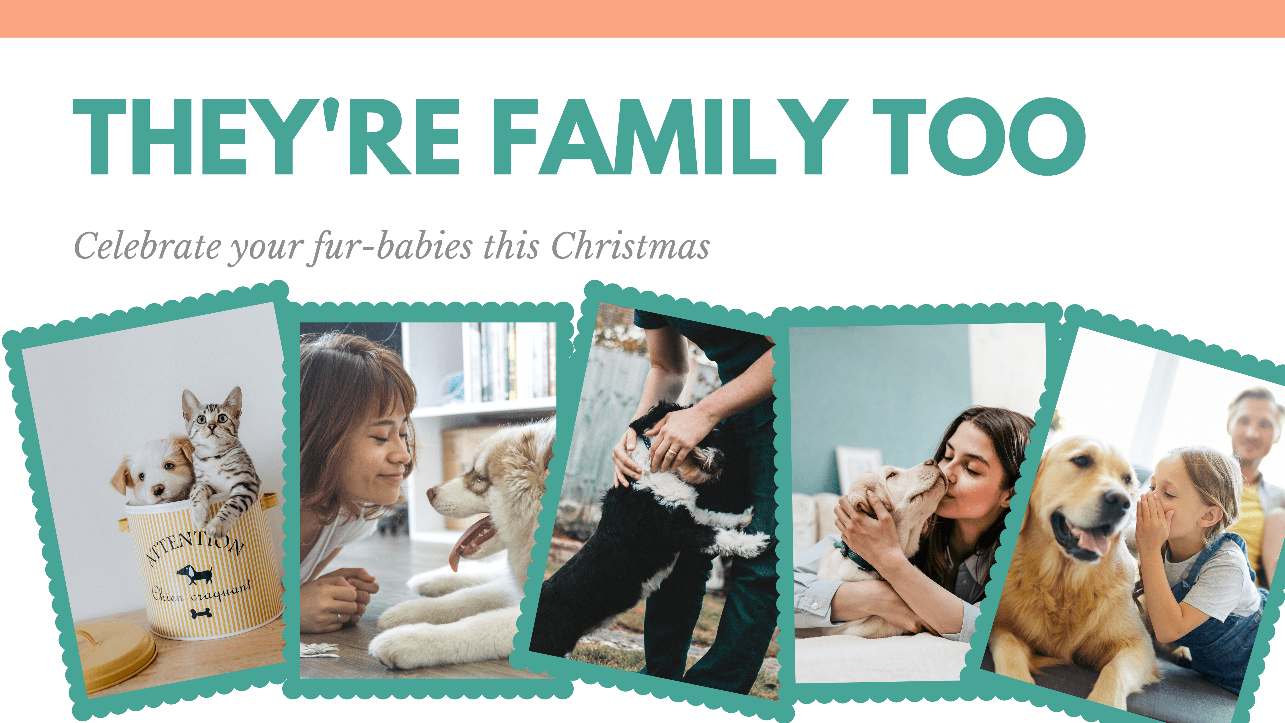 Banner with multiple pet portraits and their families Text reads They're Family Too celebrate your fur-babies this Christmas